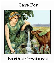Care For Earth's Creatures