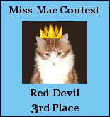 Red-Devil's winning award